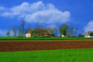Earth Healing – lecenje zemljista